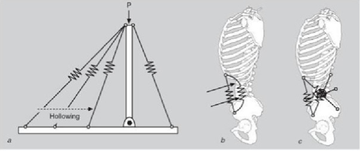 Imagen 2. Extraida de McGill SM (2007). Low Back Disorders. Second ed. Canada: Human Kinetics